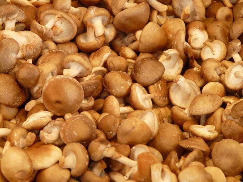 shiitake-mushrooms-633a126-6048c87d452bdca38085bb4c5840b548-5309396-2