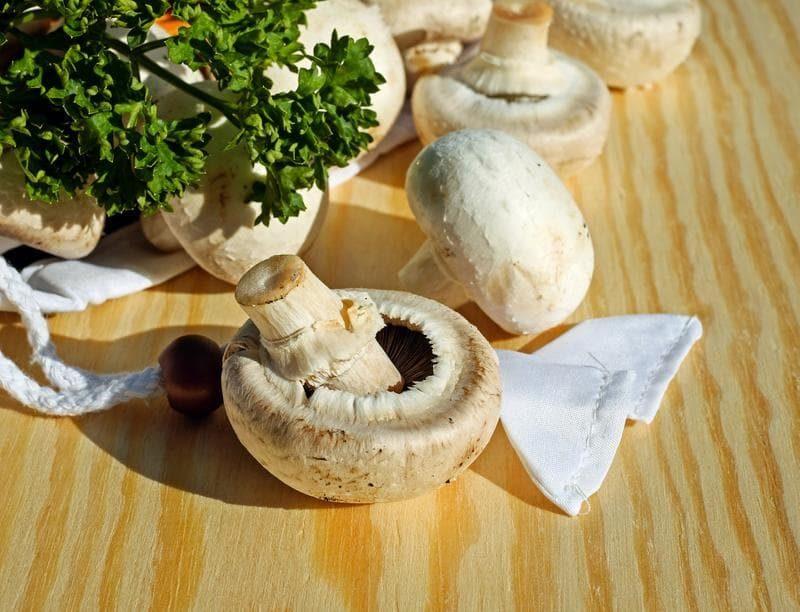 white-mushrooms-633a126-6e52ef71827f4987ee2e4bd5c43ce46f-3863439-3